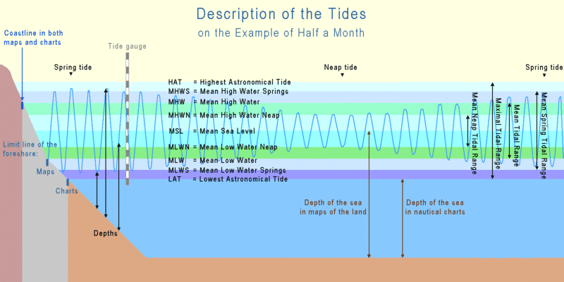 This image has an empty alt attribute; its file name is Tide_terms.png